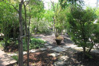 光と風を感じる小径<br /> 木漏れ日が揺れ、地面には様々な影が映し出されます。まるで森の中を散歩している様な空間です。