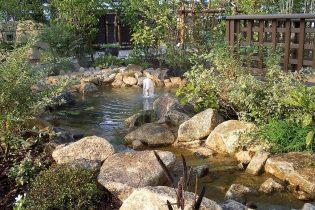 ゆるやかに流れる せせらぎ<br /> 緑豊かな水景は、生活に安らぎと癒しを与えます。水辺の小さな生き物達が目を愉しませてくれます。